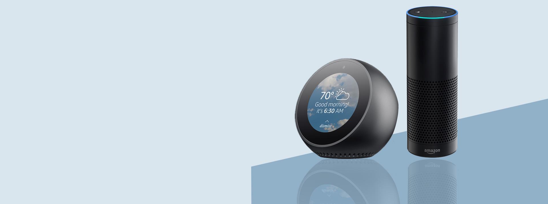 Alexa bot for business