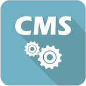 Icon image for web development cms